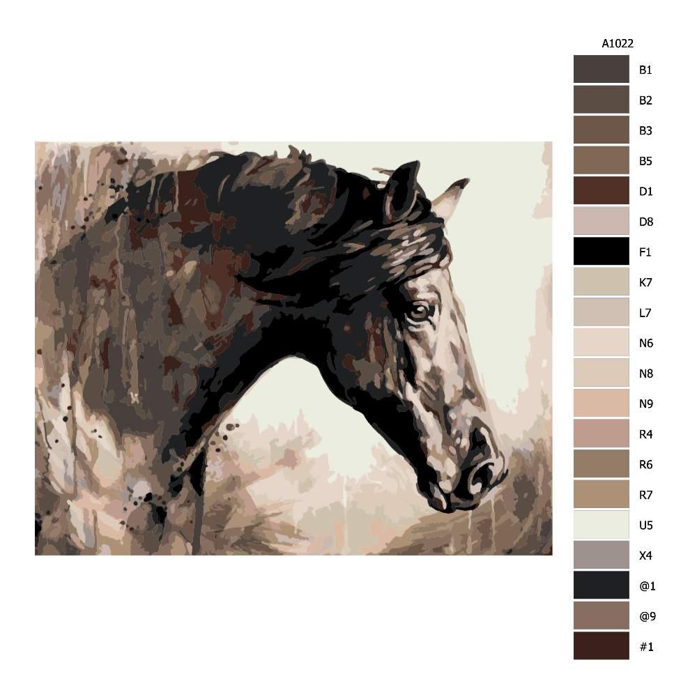 Návod pro malování podle čísel Pohled koně