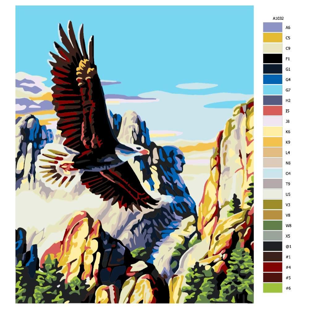 Návod pro malování podle čísel Orel bělohlavý