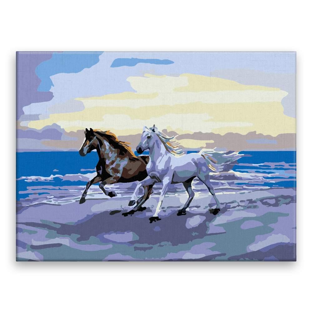 Malování podle čísel Koně na pláži