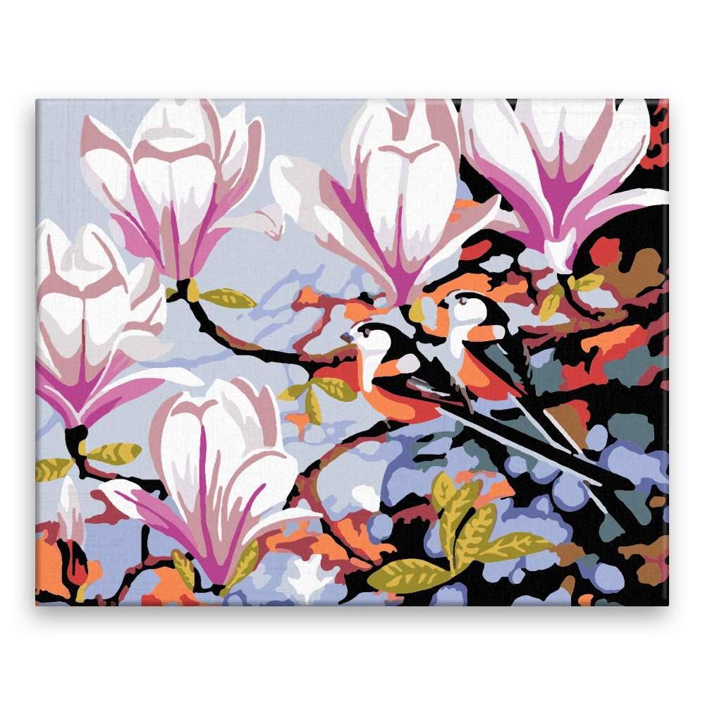 Malování podle čísel Ptáci v magnolii