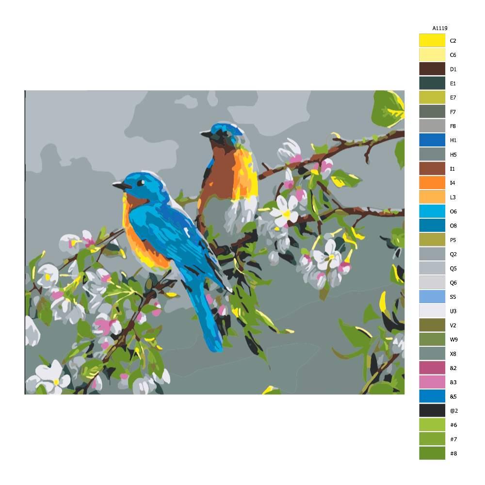 Návod pro malování podle čísel Ptáci na větvi