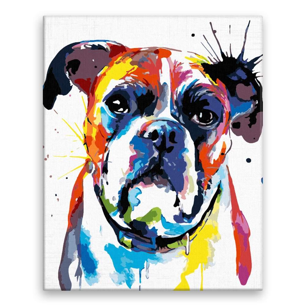 Malování podle čísel Boxer v barvách