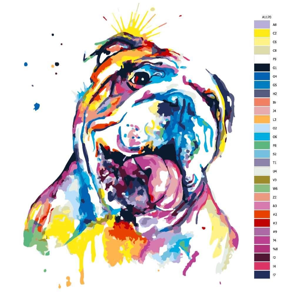 Návod pro malování podle čísel Buldog v barvách