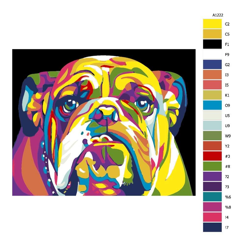 Návod pro malování podle čísel Hlava buldoka v barvách