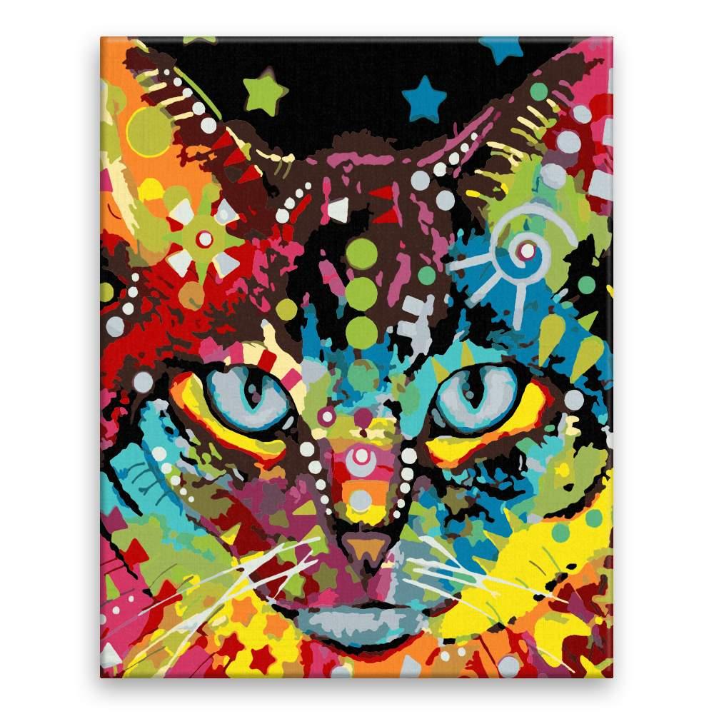 Malování podle čísel Hlava kočky pestrá