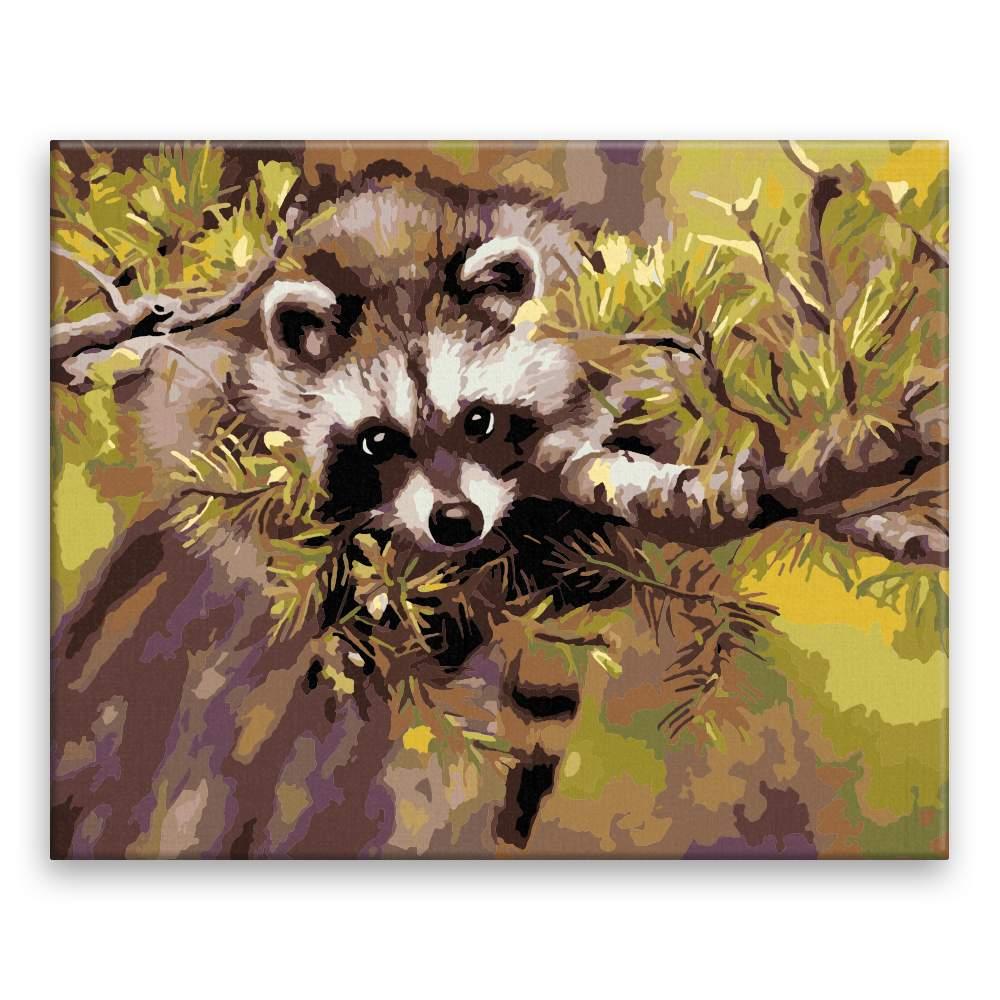 Malování podle čísel Mýval na stromě