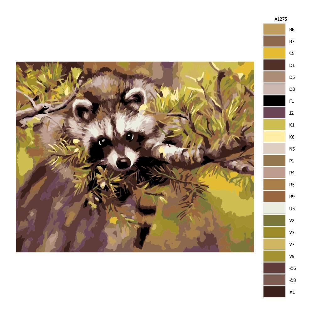 Návod pro malování podle čísel Mýval na stromě