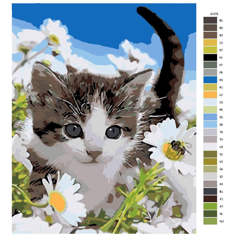 Návod pro malování podle čísel Roztomilá kočička v kvítí
