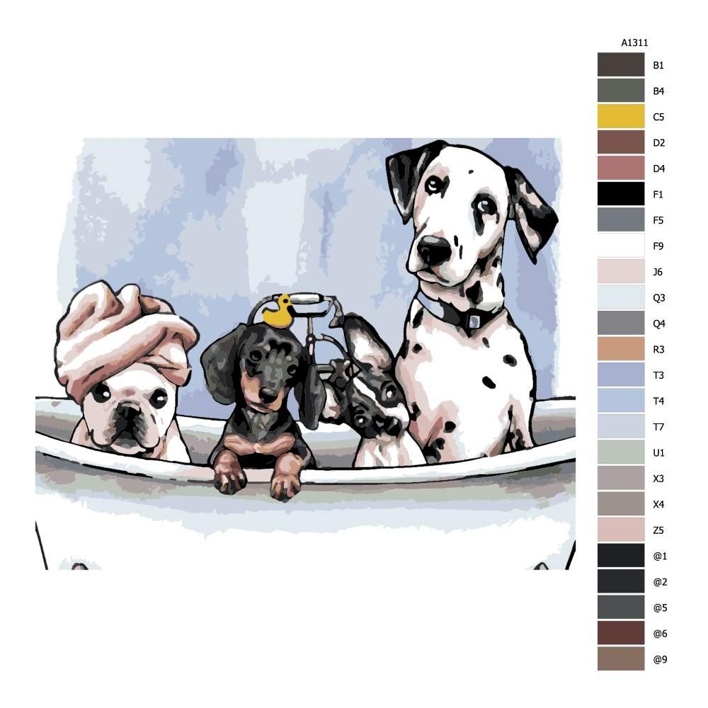 Návod pro malování podle čísel Psi ve vaně