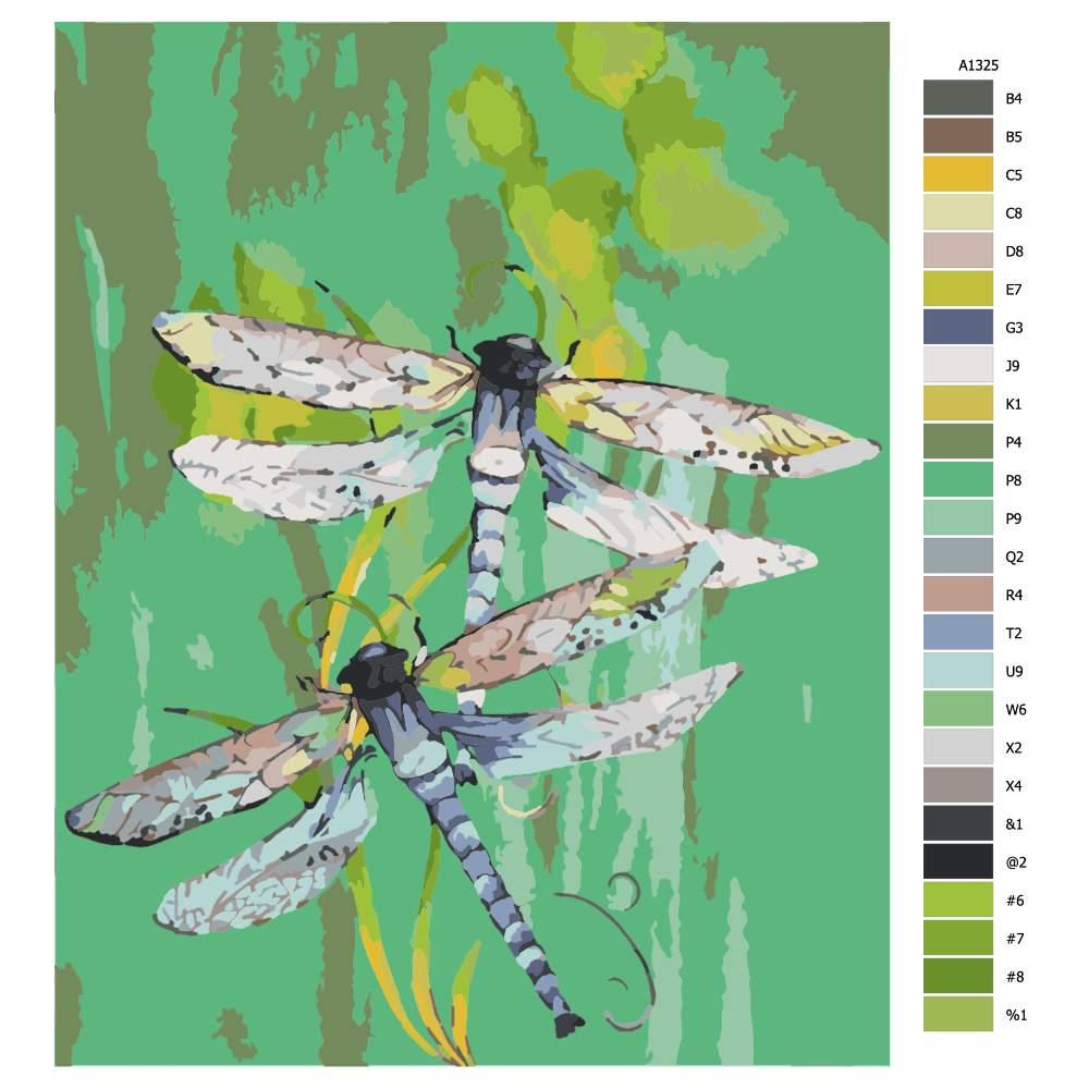 Návod pro malování podle čísel Dvě vážky