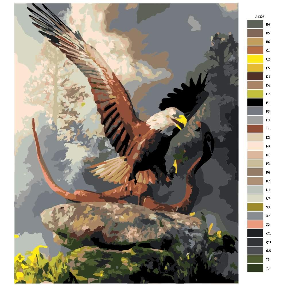 Návod pro malování podle čísel Orel lovící kobru