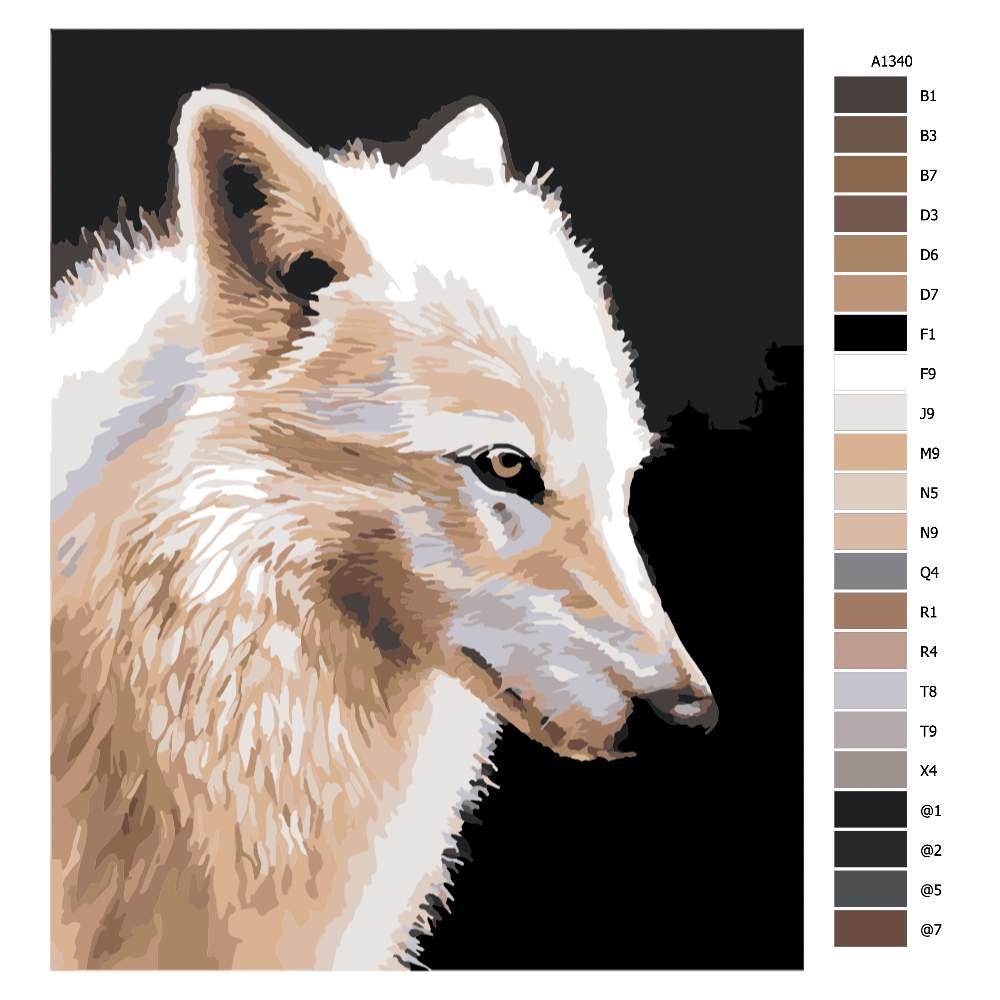 Návod pro malování podle čísel Liščí pohled
