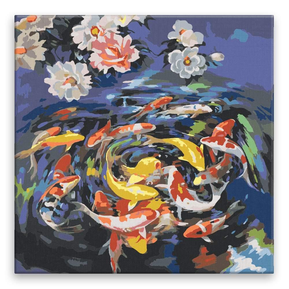 Malování podle čísel Kroužící ryby