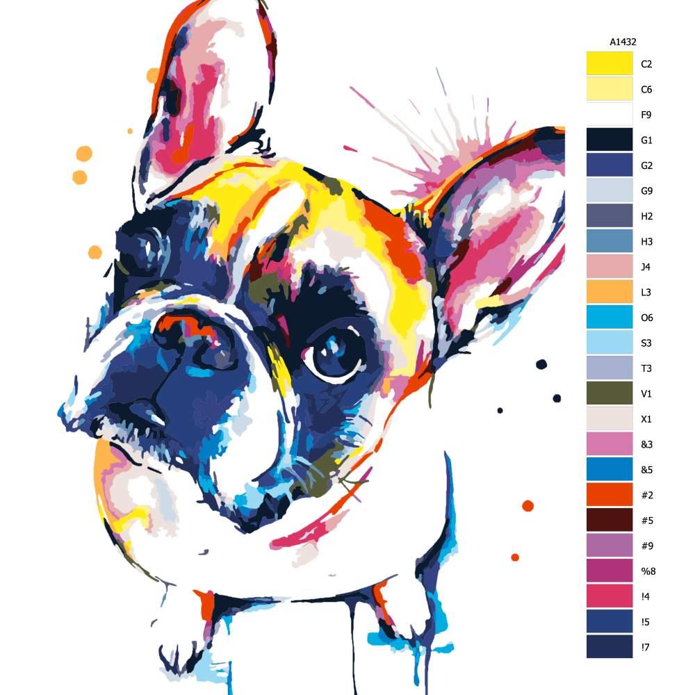 Návod pro malování podle čísel Francouzský buldoček v barvách