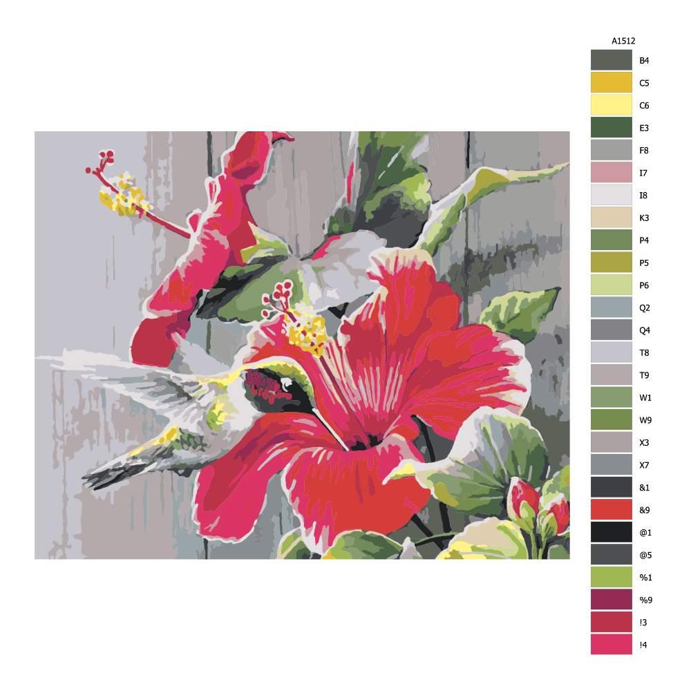Návod pro malování podle čísel Kolibřík s rudým květem