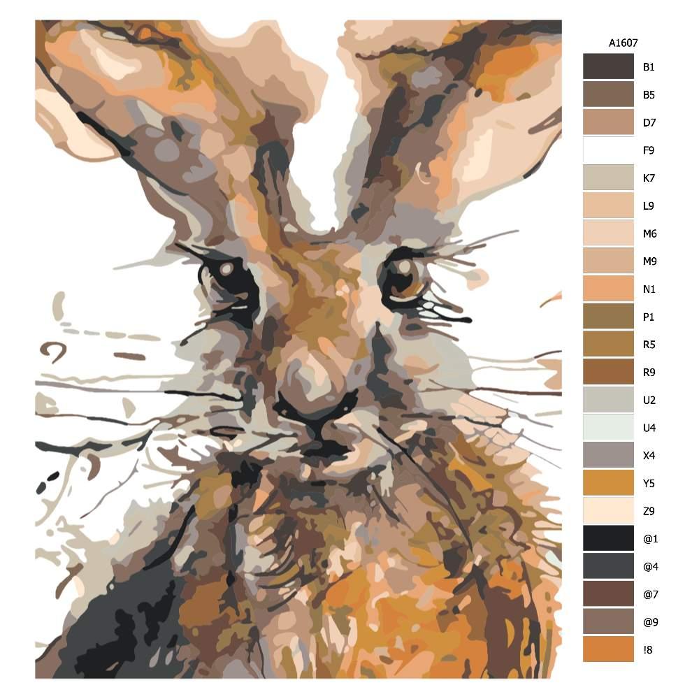 Návod pro malování podle čísel Vykukující zajíc