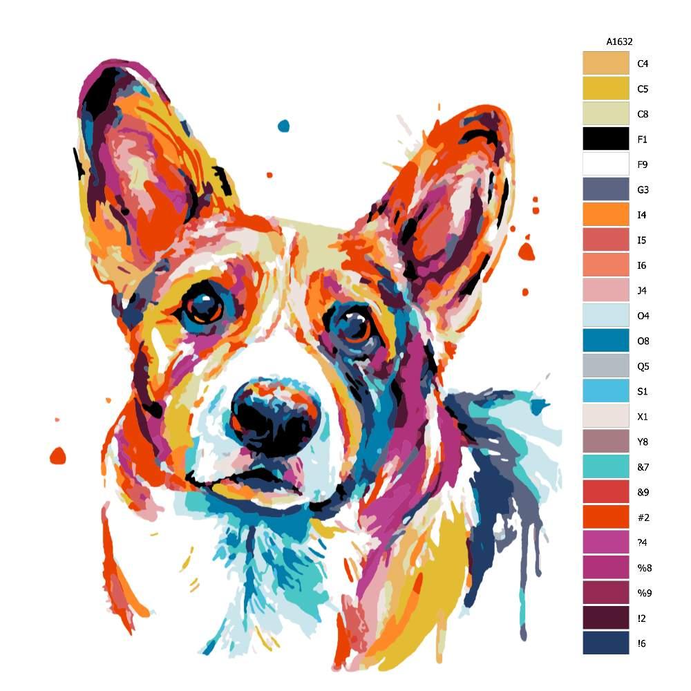 Malování podle čísel Velškorgi v barvách