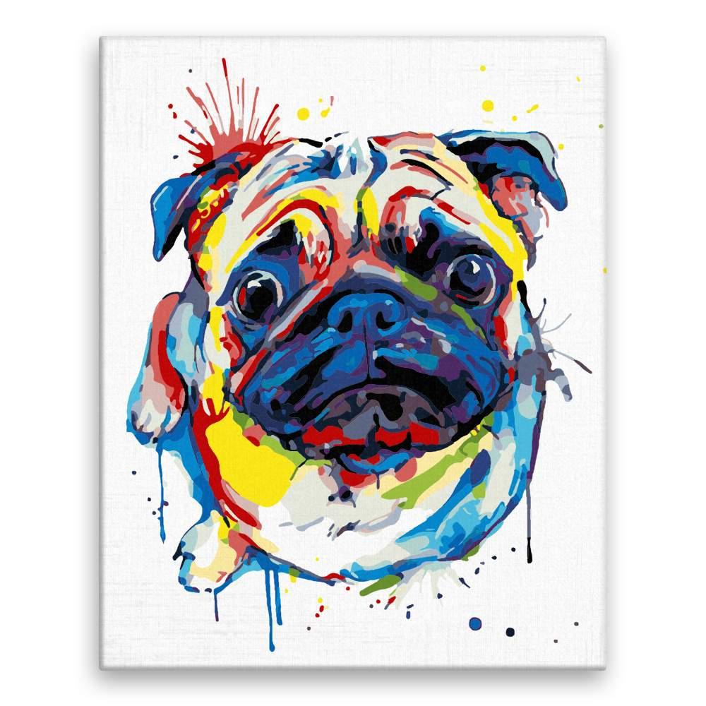 Malování podle čísel Vzhlížející mops v barvách