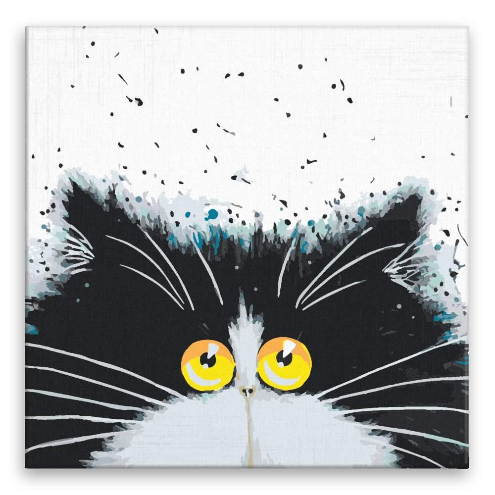 Malování podle čísel Chlupáč s velkýma žlutýma očima