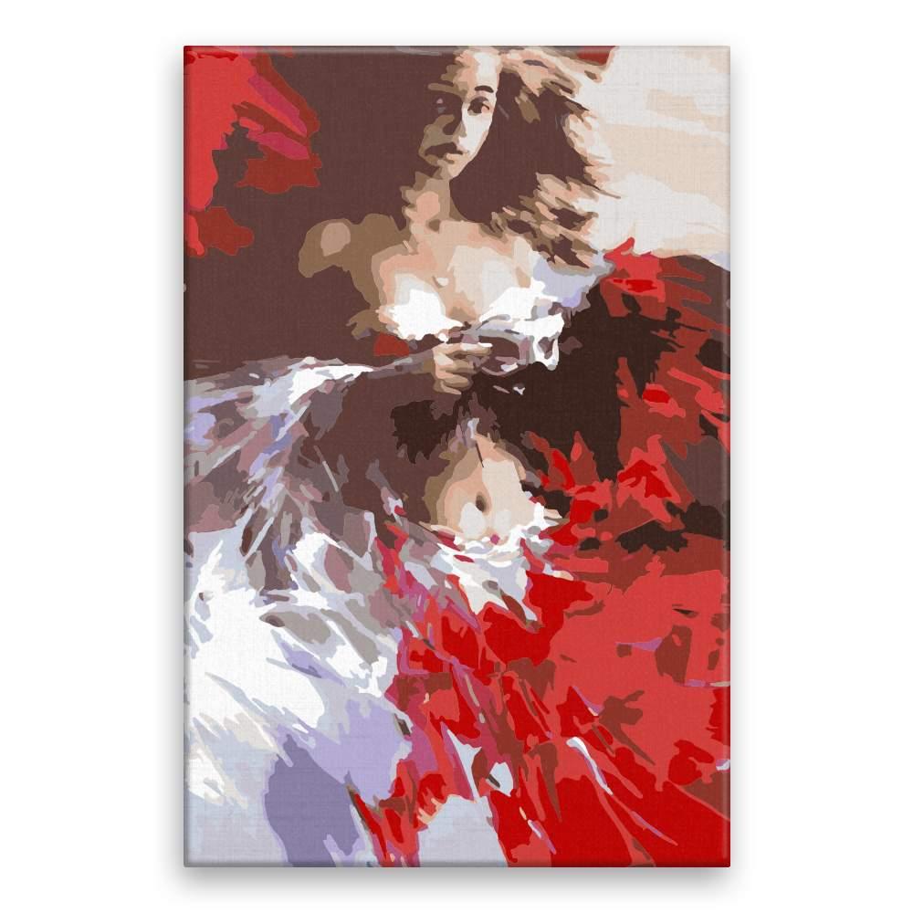 Malování podle čísel Červeno bílá