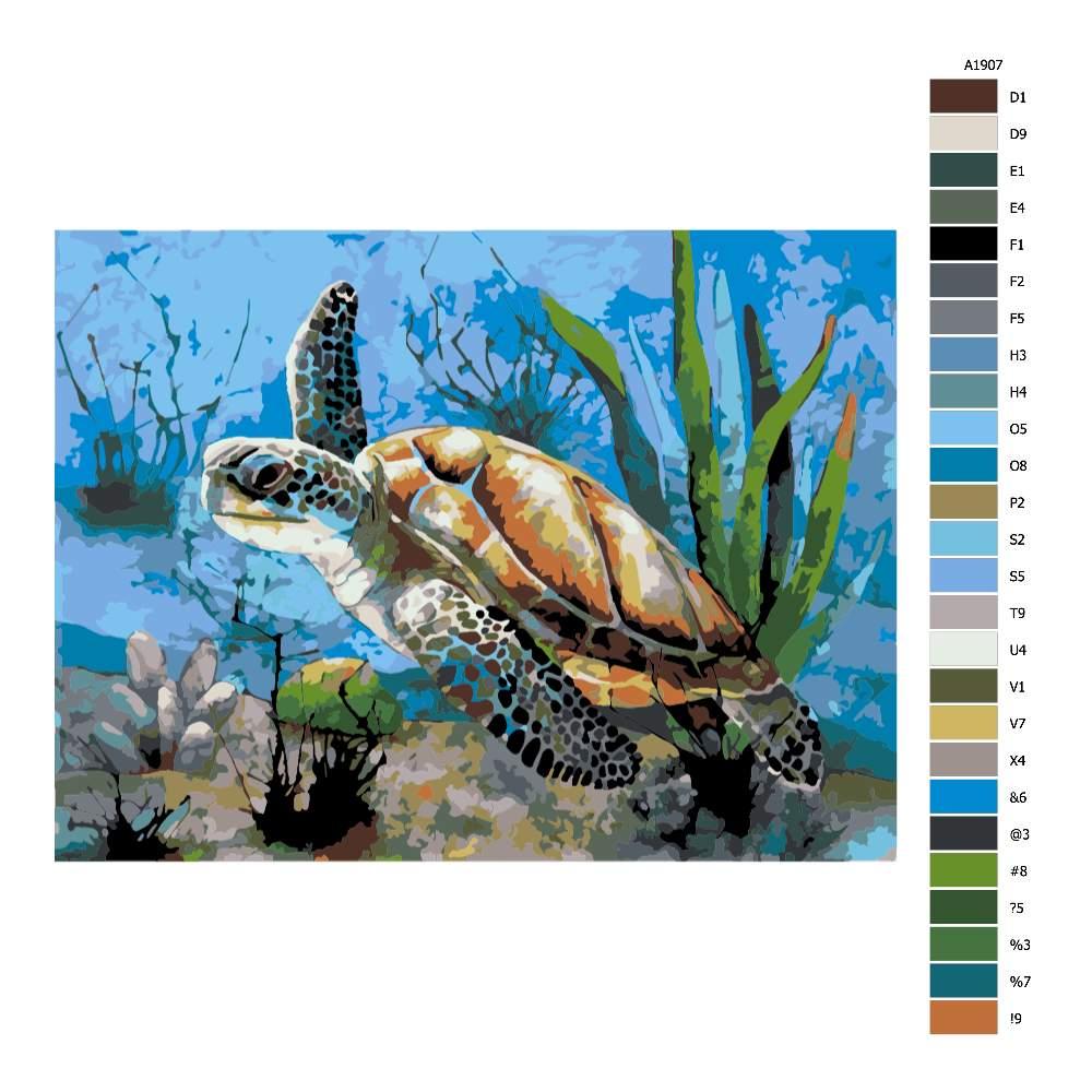 Návod pro malování podle čísel Mořská želva