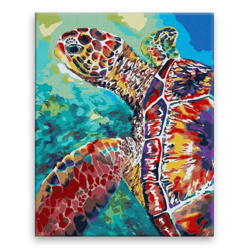 Malování podle čísel Želva v záblesku