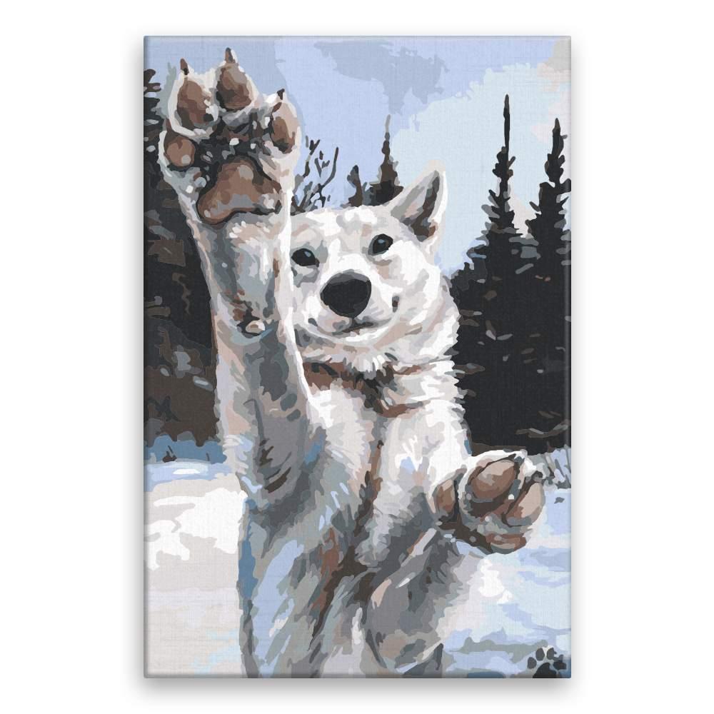 Malování podle čísel Tlapy vlka