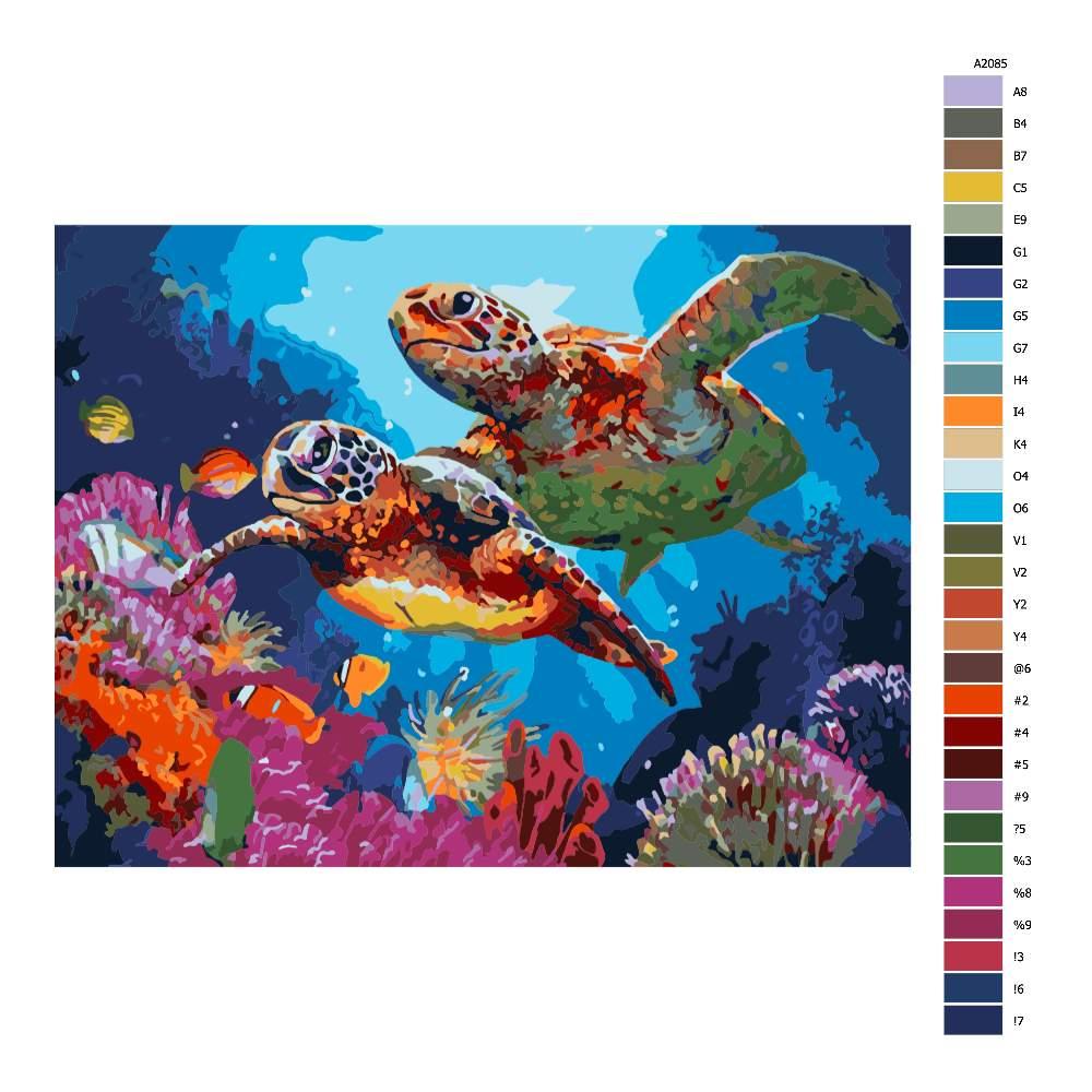 Návod pro malování podle čísel Mořské želvy