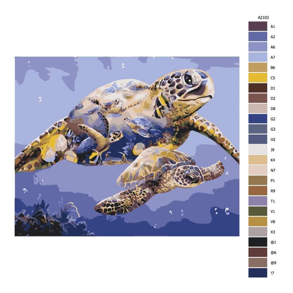 Návod pro malování podle čísel Želví království