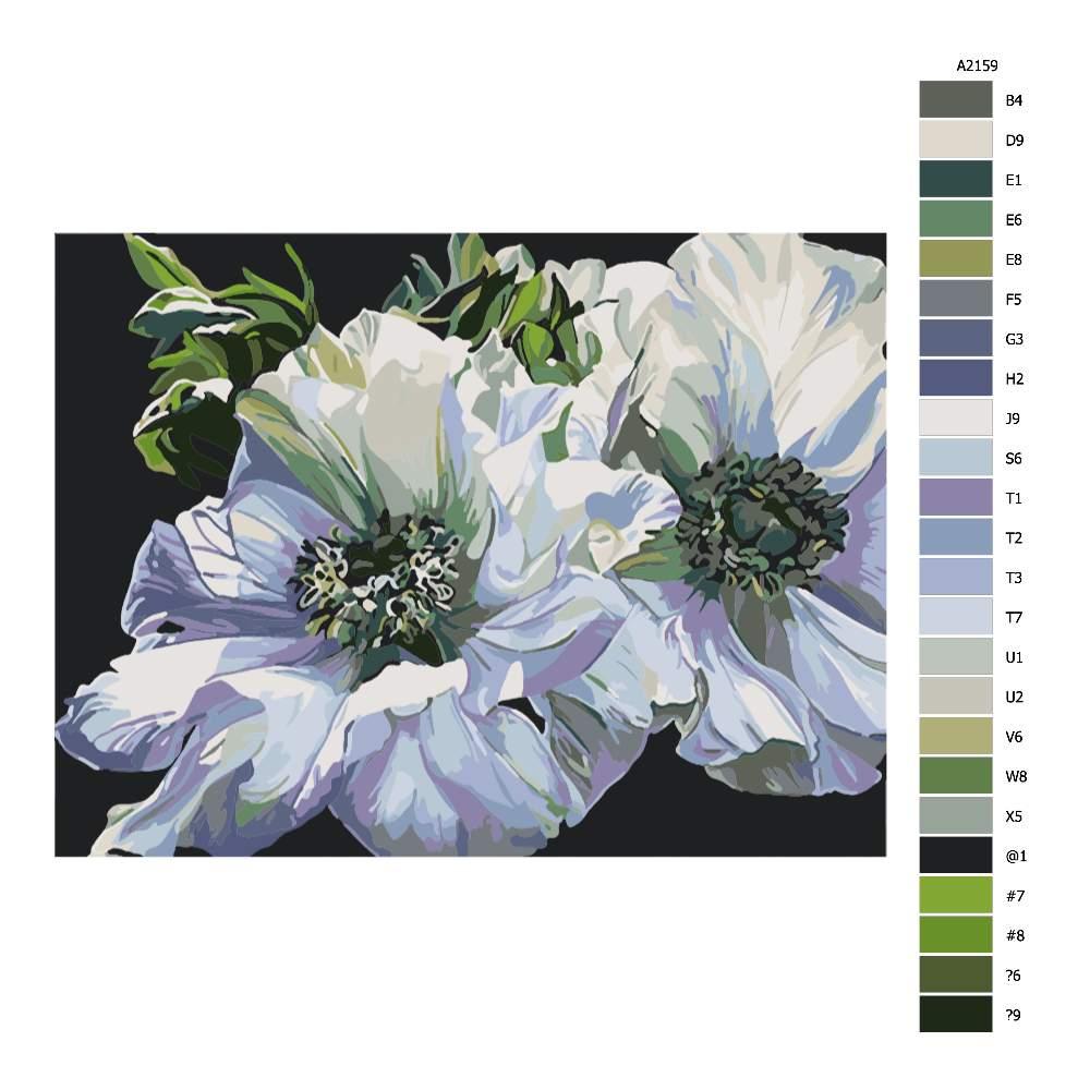 Návod pro malování podle čísel Zelenobílé květy
