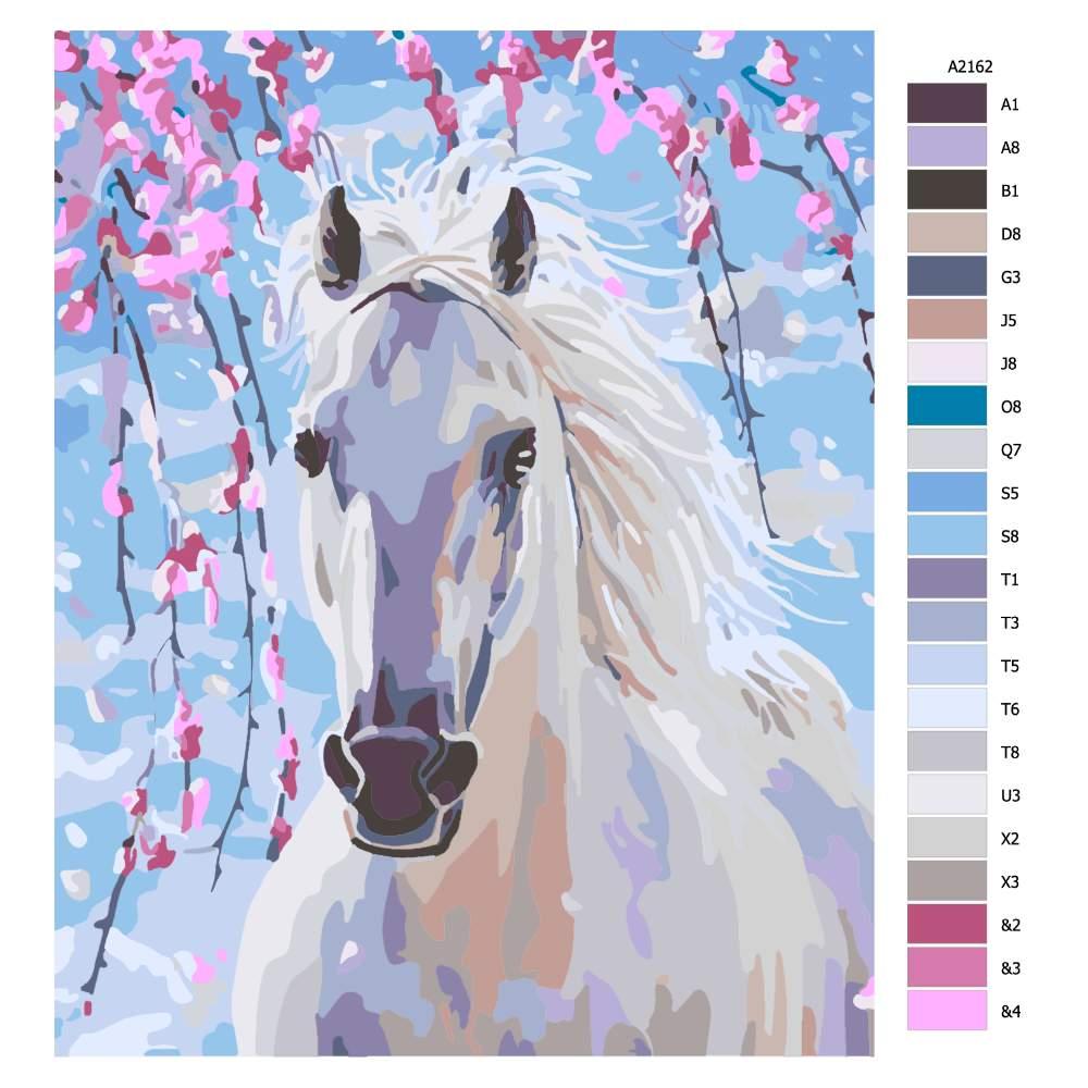 Návod pro malování podle čísel Okouzlující bílý kůň