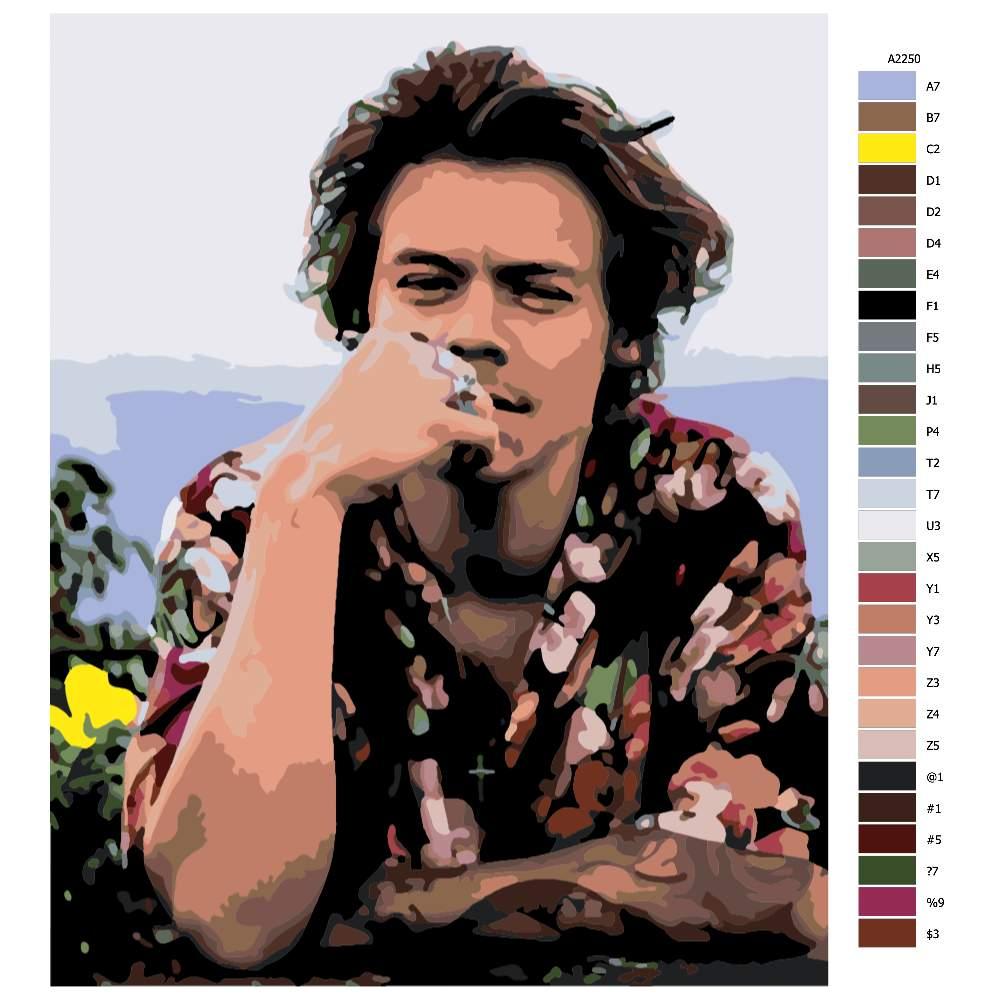 Návod pro malování podle čísel Harry Styles 04
